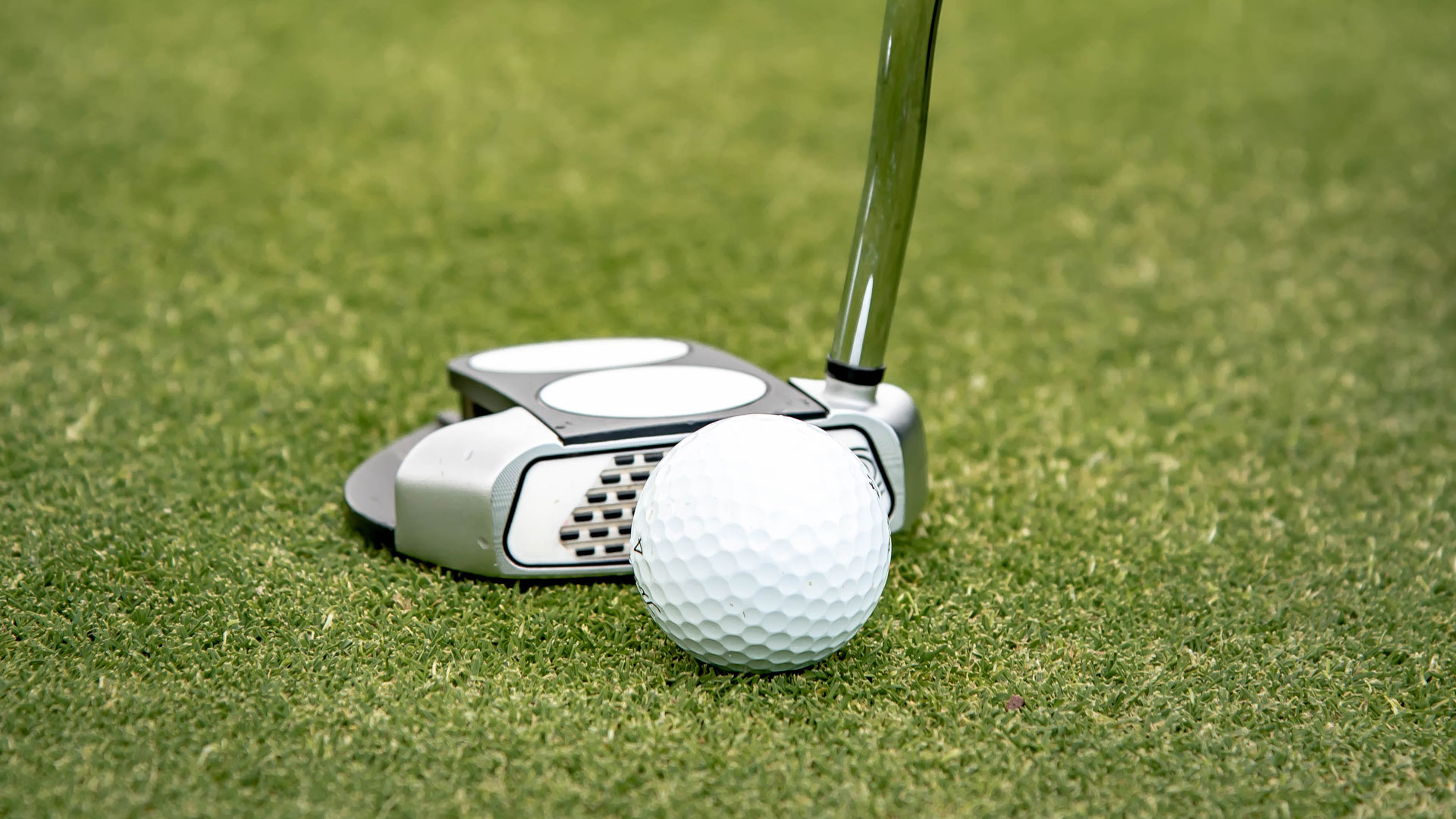 Bishopbriggs_Golf_Club_Aug_2021_Lucy_Knott_Photography-(102)